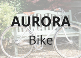 Aurora pashley, high quality bicycle